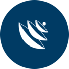 NORSAR-3D Icon